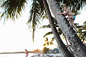 Boy climbing a palm tree on the beach of Playa Larga, family travel to Cuba, parental leave, holiday, time-out, adventure, MR, Playa Larga, bay of pigs, Cuba, Caribbean island