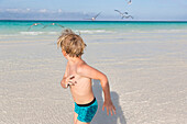 boy running away from gulls, tourists at the most beautiful beach in Cayo Guillermo, Playa Pilar, sandy dream beach, turquoise blue sea, family travel to Cuba, parental leave, holiday, time-out, adventure, MR, Playa Pilar, Cayo Guillermo, Jardines del Rey