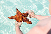 Child with starfish, tourists at the most beautiful beach in Cayo Guillermo, Playa Pilar, sandy dream beach, turquoise blue sea, swimming, family travel to Cuba, parental leave, holiday, time-out, adventure, Playa Pilar, Cayo Guillermo, Jardines del Rey,