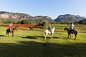 Horseride, Mogotes and tobacco fields in Vinales, climbing region, loneliness, countryside, beautiful nature, family travel to Cuba, parental leave, holiday, time-out, adventure, National Park Vinales, Vinales, Pinar del Rio, Cuba, Caribbean island