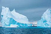 The expedition cruise-ship MS Bremen (Hapag Lloyd) is dwarfed by a towering iceberg, Active Sound, Antarctica