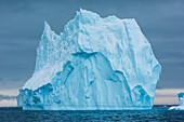 A towering iceberg drifts in the sea, Active Sound, Antarctica