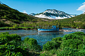 A beat-up blue boat lies in a stream surrounded by grass and bushes with a mountain in the background, Russkaya Bay, Kamchatka Peninsula, Russia, Asia