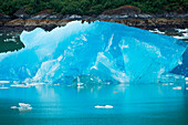 An iceberg of bright blue glacial ice floats in the water, Tracy Arm, Alaska, USA, North America