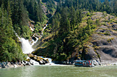 Tourists in a jet boat approach a waterfall surrounded by trees and bushes, LeConte Bay, Tongass National Forest, Alaska, USA, North America