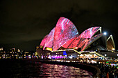 The lit-up Opera House during the Vivid Festival, Sydney, New South Wales, Australia