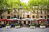 square with restaurants, Tourtour, Département Var, Region Provence-Alpes-Côte d' Azur, South of France, France