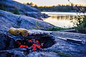 Barbecue by the campfire, Kaellandsoe near Lackoe Castle on Lake Vänern, Sweden