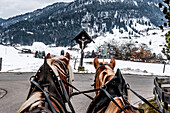horse and carriage, snowy landscape, Illertal, Hoernerdoerfer, Allgaaeu, Baden-Wuerttemberg, Germany, Europe, winter, Alps