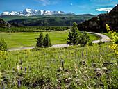 Mountain landscape with road, Tchujski Trakt, Altai, Siberia, Russia
