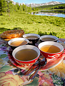 Cups of tea, chai, Altai, Siberia, Russia
