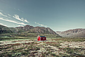 View on the nature of Greenland, greenland, arctic.