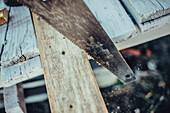 A saw cutting wood, greenland, arctic.