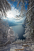 Winter at Koenigssee, Koenigssee, Berchtesgaden, Bavaria, Germany