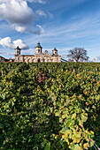 Cos d Estournel, vineyards in Medoc, Bordeaux, Gironde, Aquitaine, France, Europe