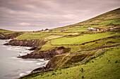Slea Head Viewpoint, Dingle Peninsula, Slea Head Drive, County Kerry, Ireland, Wild Atlantic Way, Europe