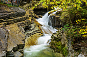 River with trees in autumn colours, Kuhflucht waterfall, Farchant, Ester Mountains, Bavarian Alps, Upper Bavaria, Bavaria, Germany