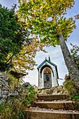Chapel in forest, Riederstein, Bavarian Alps, Upper Bavaria, Bavaria, Germany
