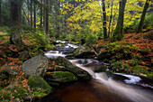 Waterfall Untere Bodefälle, River Warm Bode, Braunlage, Harz National Park, Lower Saxony, Germany, Europe