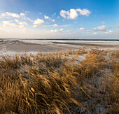 stein, kiel fjord, baltic sea, friedrichsort, kiel, schleswig-holstein, germany