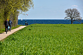 people riding bike near beach of  Baltic Sea, Kellenhusen,  Schleswig Holstein, Germany