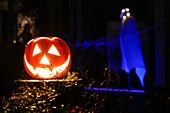 pumpkin on Halloween, Hamburg, Germany