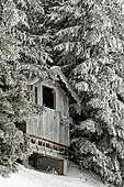 frozen hut in woods, Charmey, Switzerland