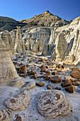 Rock towers with white sandstone, Bisti Badlands, De-Nah-Zin Wilderness Area, New Mexico, USA