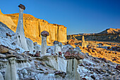 White rock towers at Wahweap River, Grand Staircase-Escalante National Monument, Utah, USA