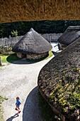 Irish National Heritage Park, Wexford, Ireland, Europe.