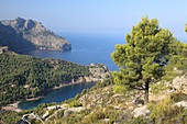Views from Torre de Sa Mola: Cala tuent and Sa Costera. Serra de Tramuntana, Majorca, Balearic Islands, Spain.