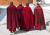 Tibetan monks of the gelug order in Labrang monastery, Gansu province, Labrang, China.