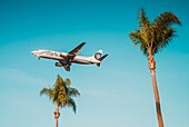 A commercial airline jet on final approach to San Diego International Airport, with palm trees in the foreground