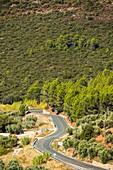 Road. Sierra de Alcaraz. Salobre. Albacete Province. Spain