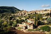 Cartuja , Valldemossa, Sierra de Tramuntana, Mallorca, Balearic Islands, spain, europe.