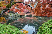 Classic autumn view at Daigo-ji Temple, Kyoto, Japan.