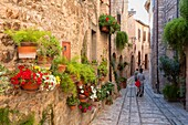Europe, Italy, Umbria, Perugia district, Spello.