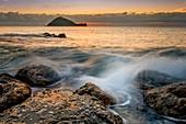 Island Gallinara, Alassio, province of Savona, Liguria, Italy, Europe.