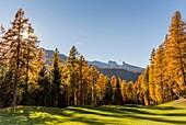 Sunny day in the Dolomites,Cortina d'Ampezzo,Belluno district,Veneto,Italy,Europe.