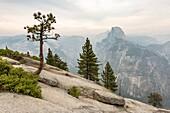 Half Dome peak shot from Glacier Point. Yosemite National Park, Mariposa County, California, USA.