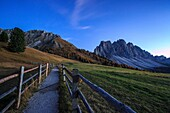 Green meadows and colorful woods in autumn frame the Odle. Funes Valley South Tyrol Dolomites Italy Europe.