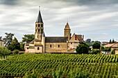 Romanesque church of Chânes and his vineyard, Burgundy, Saône-et-Loire, France, Europe.