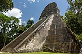 Temple V, a ruin in the archeological site of the ancient Mayan culture in Tikal National Park, Guatemala. UNESCO World Heritage site.