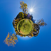 autumncolors in the Eng, maple, Acer pseudoplatanus, little planet, Austria, Europe