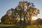 Autumnal Scene at the Eisbach in Englischer Garten, People on the green, Passer by, Munich, Upper Bavaria, Germany