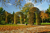 Autumnal Colours in Rosengarten, a couple relaxing on a bench, Munich, Upper Bavaria, Germany