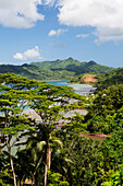 FRENCH POLYNESIA, Tahaa Island. A landscape and view of the lush vegetation of Tahaa Island.