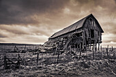 USA, Oregon, Joseph, an old barn along the road that leads to the Zumwalt Prairie Preserve in Northeast Oregon