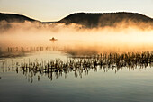 USA, Oregon, Paulina Lake, Brown Cannon, a fisherman goes through the early morning fog in his boat