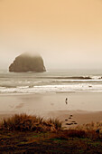 USA, Oregon, Pacific City, a foggy morning view of Pacific City beach looking out at a large rock in the distance
